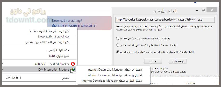 تكامل البرنامج مع المتصفح Internet Download Manager